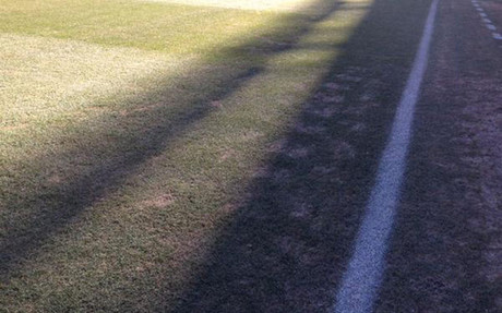 Este era el estado del c�sped de Vicente Calder�n horas antes del partido