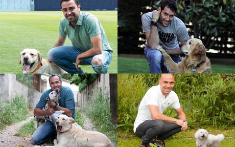 Los perros de los deportistas en Forum Bayer 2015