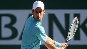 Novak Djokovic liderará a Serbia en Belgrado en el duelo con España