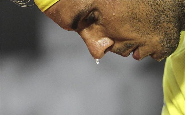 Nadal y Ferrer avanzan a cuartos de final en R�o de Janeiro