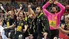 La selección española celebra el pase a la final del Europeo