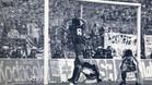 Con la pelota todav�a entrando, el capit�n Alexanko celebra euf�rico el gol