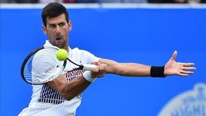 Novak Djokovic sumó su primer triunfo del año en hierba