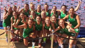 La selección irlandesa celebra su clasificación