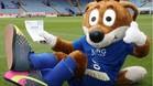 Malas noticias para Filbert Fox, la popular mascota del Leicester