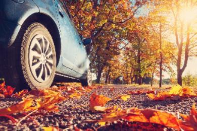 Estos 7 consejos pueden salvarte la vida en carretera este otoño