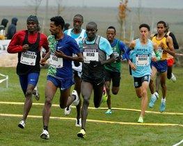 Atletas compiten durante la carrera absoluta masculina de la XVI edición del Cross de Atapuerca, celebrado en el circuito del Parque Arqueológico de Burgos.