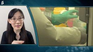 Informe Covid: la viróloga huida de China confiesa a Iker Jiménez que el coronavirus es de laboratorio