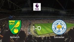 Tres puntos para el equipo local: Norwich City 1-0 Leicester City