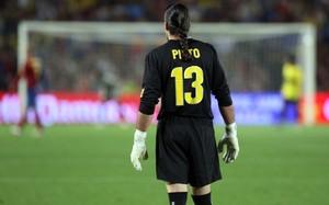 Ficha Pinto