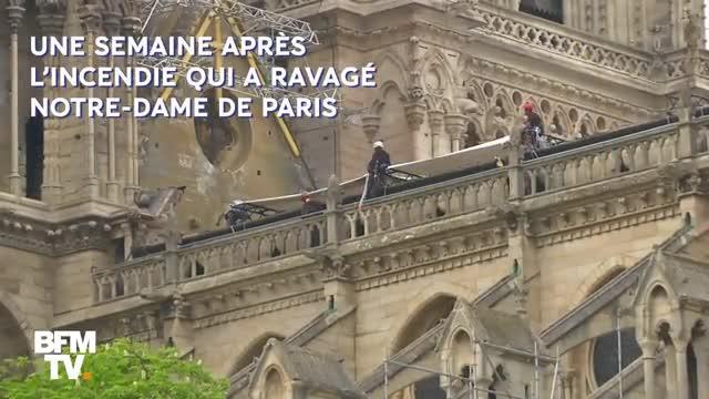 Primeras imágenes del gran paraguas para proteger Notre Dame