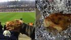 Esta es la cabeza de cerdo que acudió a Cornellà-El Prat