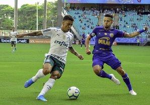 Palmieras busca meterse a otra Copa Libertadores