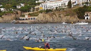 Éxito de participación con más de 1.400 nadadores