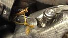 Cuerda de sujeción dañada en el STR12 de Sainz