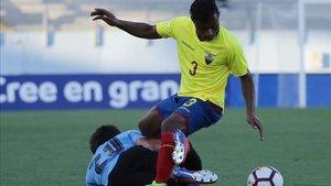 Diego Palacios ha brillado esta temporada con la sub20 de Ecuador y el Willem II