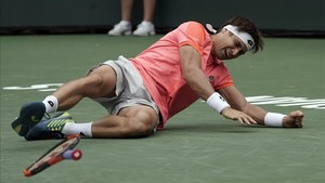 David Ferrer cayó eliminado en Indian Wells