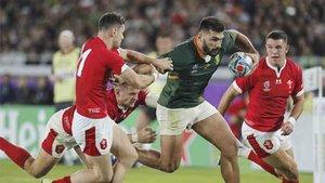 Sudafrica se clasificó para la final del Mundial de rugbi