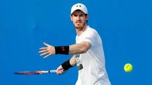 Las lesiones apartan a Murray de los primeros puestos ATP