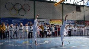 Taekwondo en Sant Esteve Sesrovires
