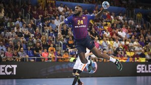 El Barça Lassa es casi invencible en el Palau