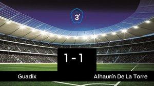 Empate, 1-1, entre el Guadix y el Alhaurín De La Torre
