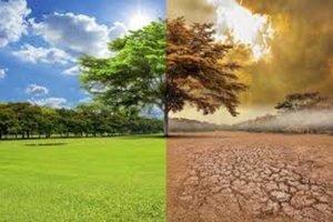El cambio climático provocaría el fin del humanidad en 2050
