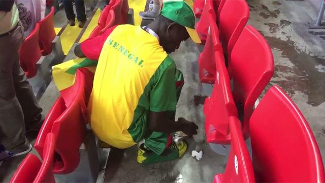 Hinchas de Senegal recogen la basura del estadio tras ganar a Polonia