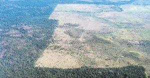 El Amazonas, peor que nunca