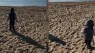 Las imagenes de los pequeños en la playa