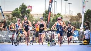 Valencia Triatlón de la edición pasada