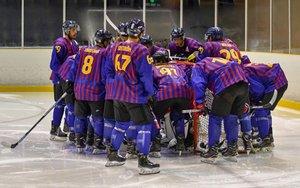hockey-hielo-bara2