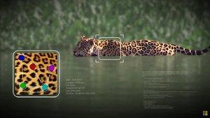 Microsoft y Wild Me por la preservación de la vida animal
