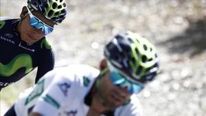 Nairo Quintana y Alejandro Valverde, dos campeones en Movistar