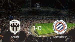 El SCO Angers se impone por la mínima al Montpellier HSC (1-0)