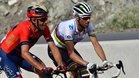 NIbali y Valverde, entre las grandes atracciones en la Milán San Remo
