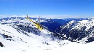 El helicóptero sube hasta las cimas de las montañas para después bajar esquiando por zonas fuera pista
