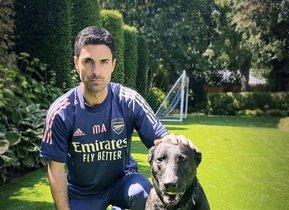 Mikel Arteta, entrenador del Arsenal, adquiere un perro más caro que un coche