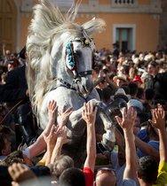 Un caballo se levanta entre la multitud durante el Caragol des Born, una misa de caballos y personas que se arremolinan al ritmo de la música durante el tradicional festival de Sant Joan (San Juan) en la ciudad de Ciutadella, en la isla de Menorca.