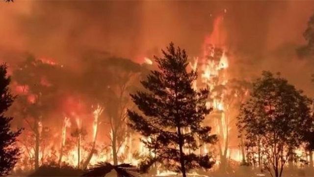 Australia se refuerza ante los incendios mientras los daños se disparan