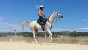 Crivillé montando su caballo Asifa con el que compite