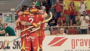 Los españoles celebran la consecución del título europeo