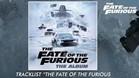 Pinto colabora en 'Fast & Furious8'