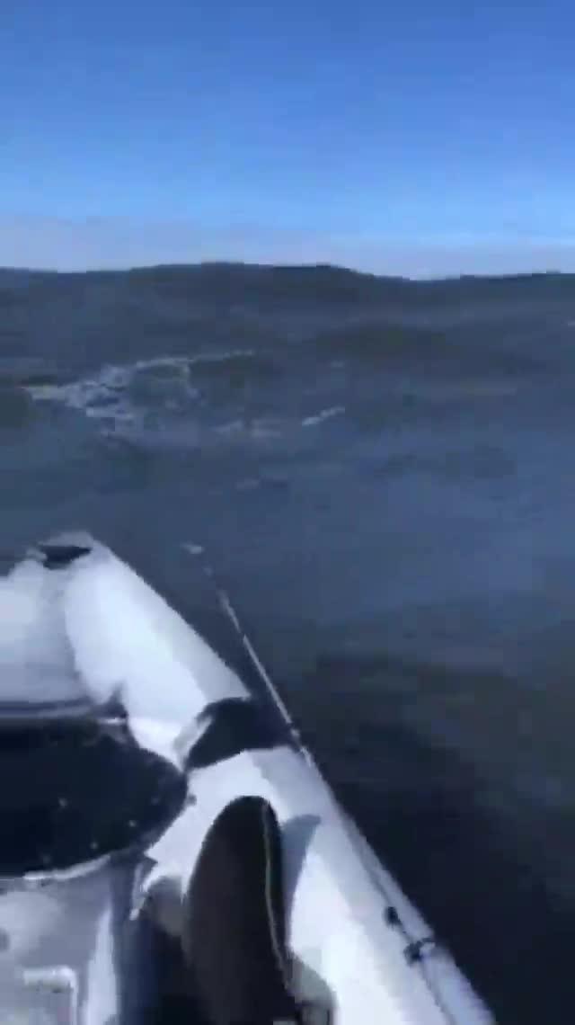El kayakista que se despidió a través de Facebook Live antes de morir