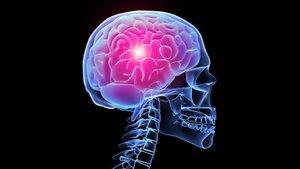 La esclerosis lateral amiotrófica (o ELA) es una enfermedad del sistema nervioso central