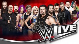 The Miz contra Roman Reigns en el primer combate confirmado para WWE Live en España