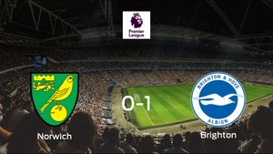 El Brighton and Hove Albion vence en el Carrow Road al Norwich City (0-1)