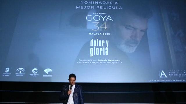 Antonio Banderas: Es complicado ganar, pero el premio es esa nominación