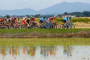El peloton viaja durante la etapa quince del 102º Giro de Italia - Tour de Italia - carrera ciclista, 232kms desde Ivrea a Como.