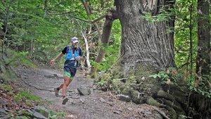 Ya son más de 1.000 los atletas inscritos en la Trail Fonts del Montseny